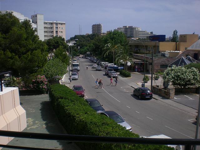 Mallorca palma tourism