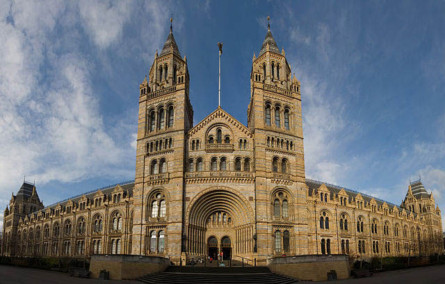 Londons best museums - Natural history museum