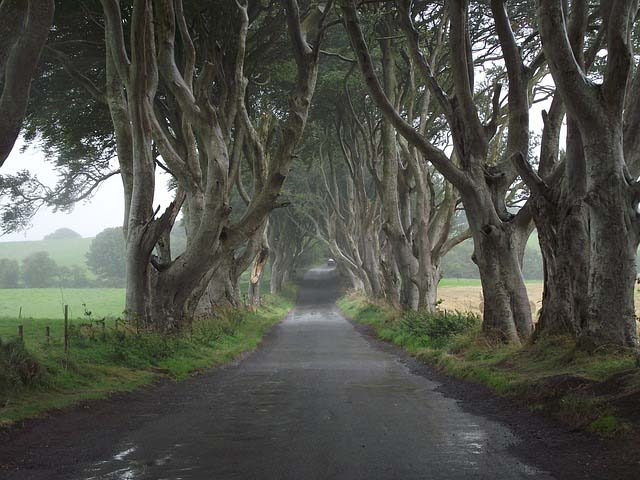 Ireland dark hedges - Game of Thrones filming locations