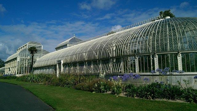 Dublin city break - Botanic gardens