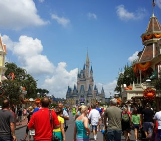 People enjoying a sunny day at Walt Disney World