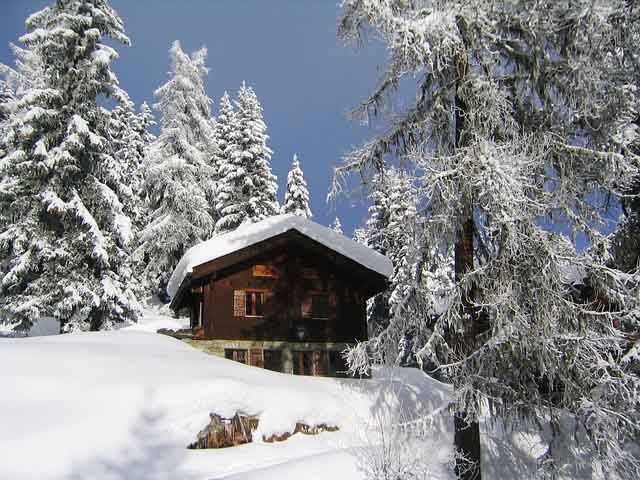 Why choose The Alps for Skiing? For Chalets