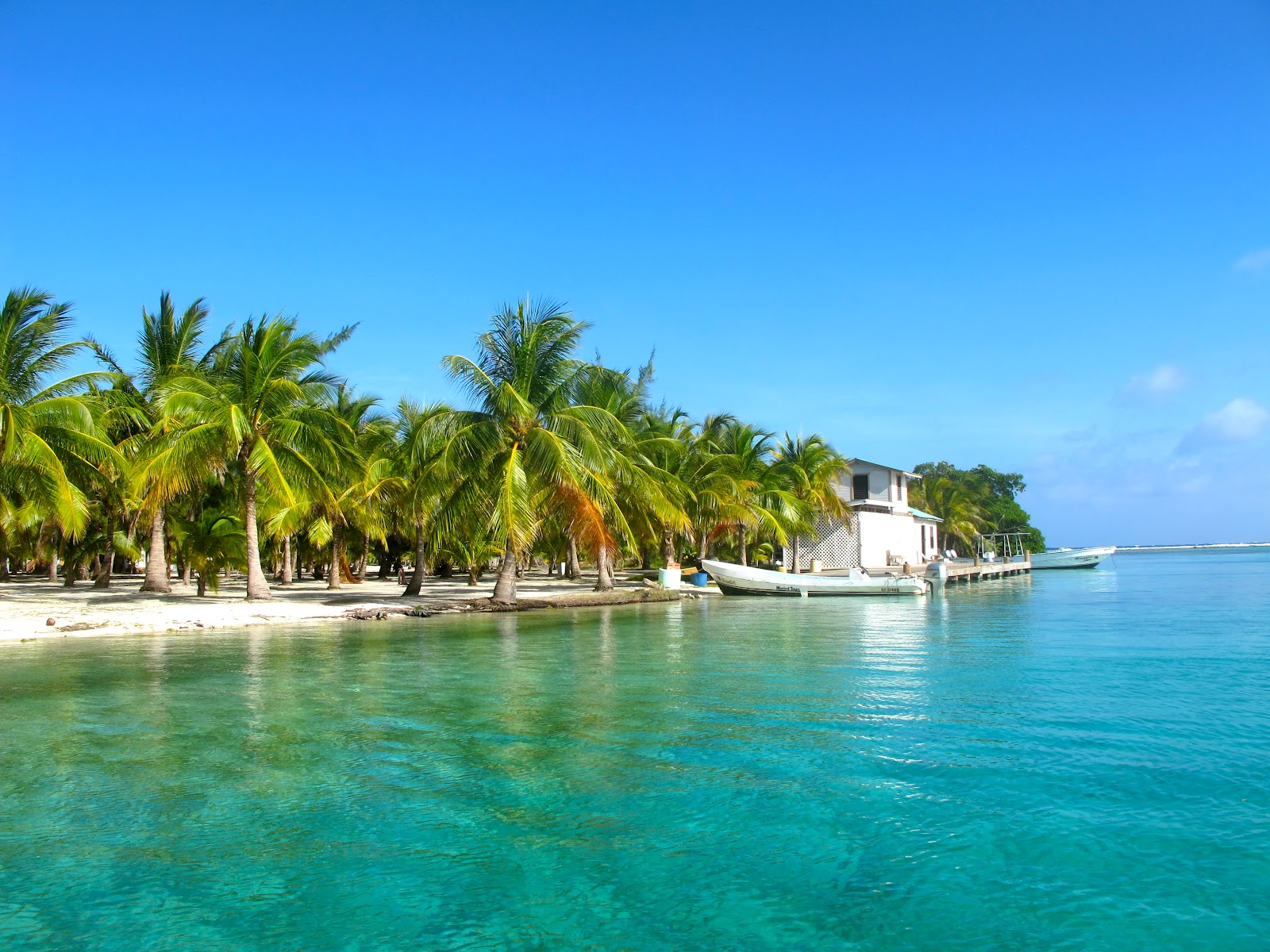 Belize: A Scuba Dive Site Dream Come True