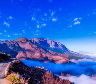 Essential travel tips for South Africa - feature
