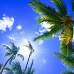 5 Tips to Help You Improve Your Hawaii Vacation