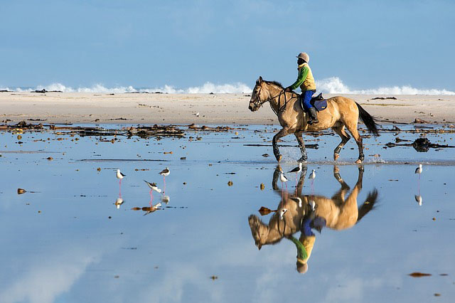 horse riding - outdoor activities to try in wales