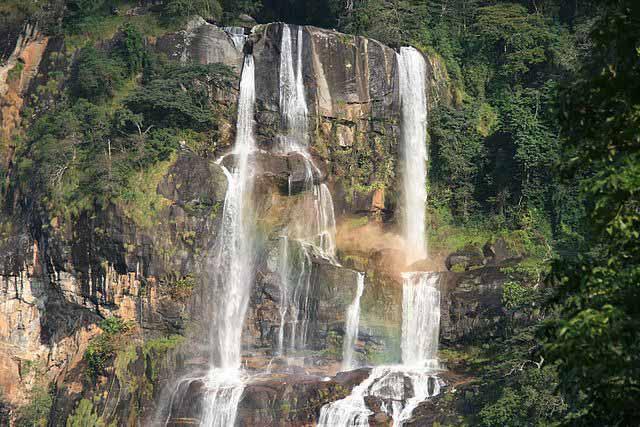 5 Amazing Mountains to Climb in Tanzania Udzungwa