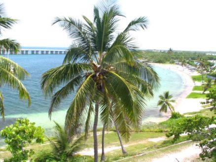 Florida Keys for Outdoorsy
