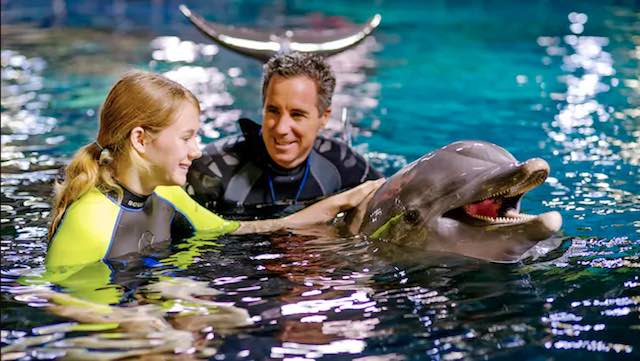 A girl meets a dolphin in Disney Orlando.