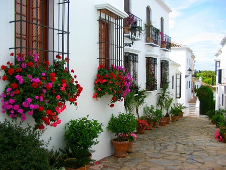 Marbella & Puerto Banus Spain