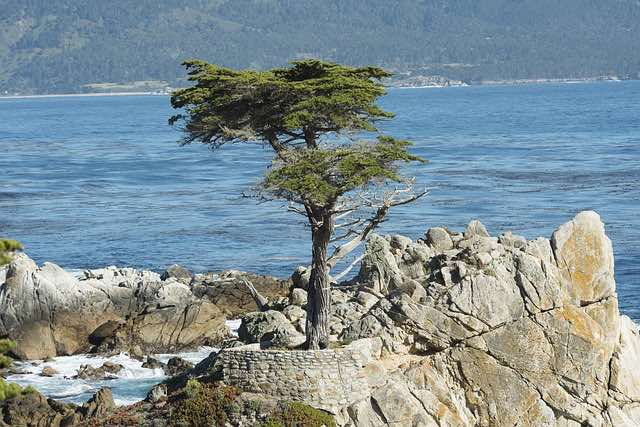 Pebble Beach California USA
