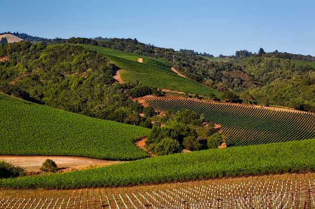 Wine country California is a romantic destination
