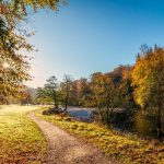 Best Walking Routes in Southern England