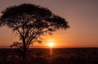 The Ultimate Guide to Traveling Africa Virtually