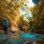 10 Places For Trekking in Wayanad, India