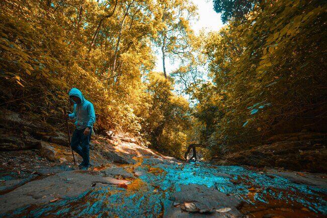 10 Places for Trekking in Wayanad